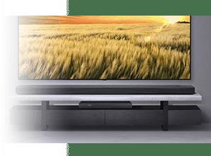 LG SL10YG - 4K doorvoer