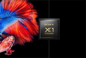 Sony OLED A9 - X1 processor HDR