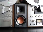 Klipsch R-51-M (per paar) Reviews