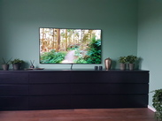 LG OLED65GX6LA (2020) Reviews