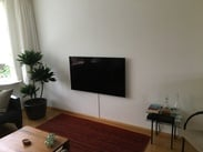 Philips 55OLED854 Reviews