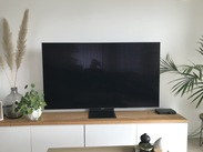 Samsung QLED 4K 65Q95TC (2020) Reviews