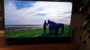 Sony KD-55XH9505 Reviews